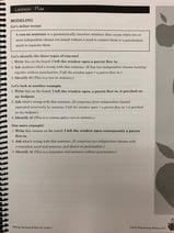 revising & editing, grammar, mechanics, student samples