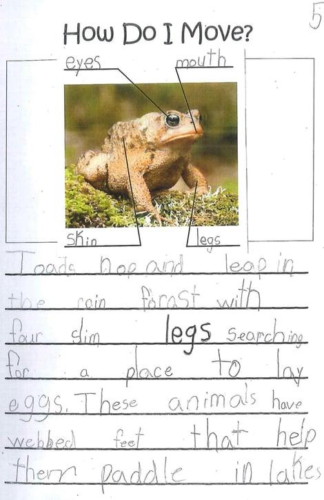 writing sample, Grade 1, science, vocabulary, sentence variety
