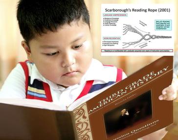 boy reading - SOR