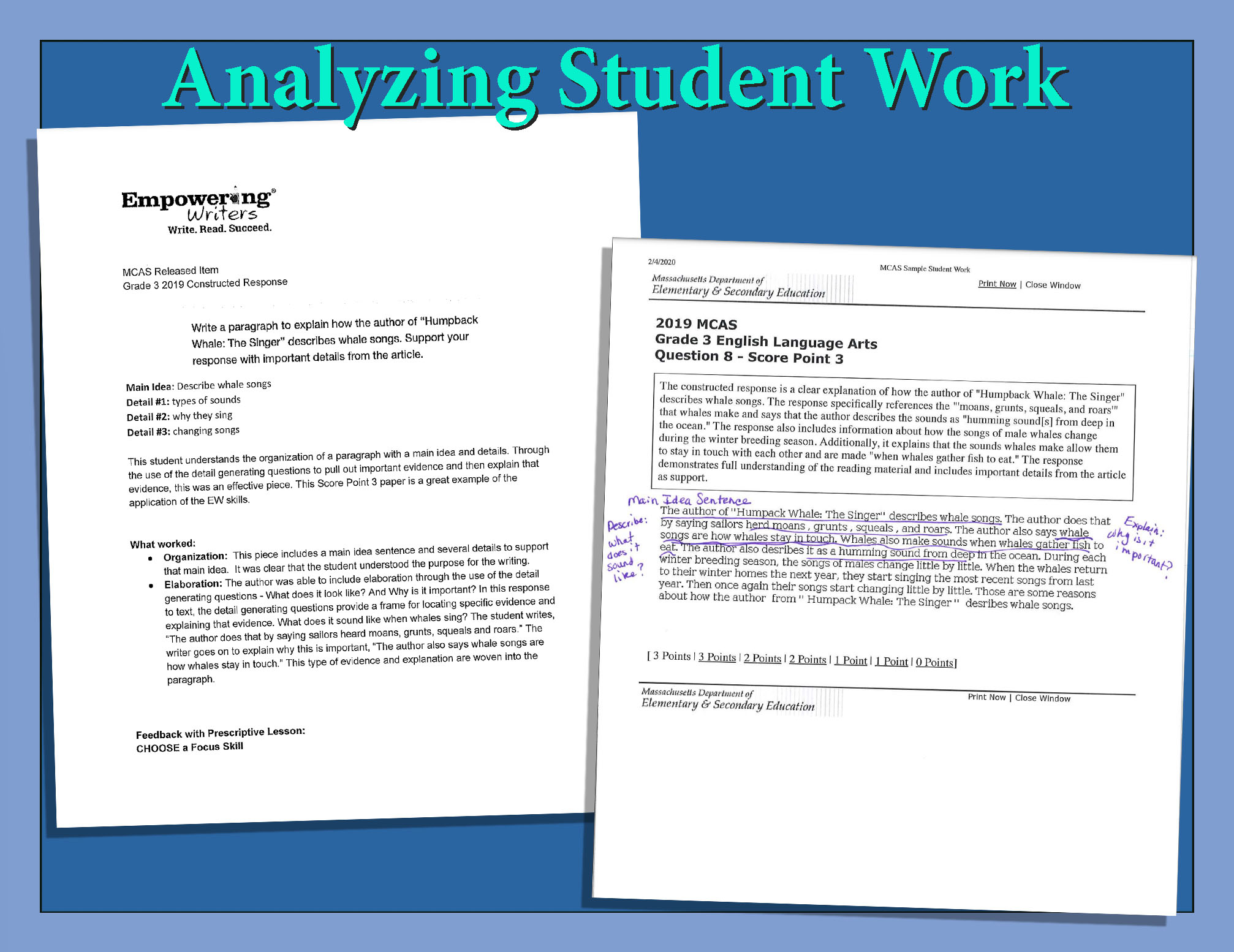 Analyze Student Sample Image